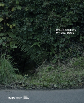 Willie Doherty. WHERE / DOVE